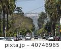 ハリウッド 40746965