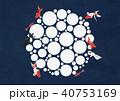 金魚 アクアリウム 和のイラスト 40753169