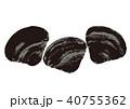蜆 貝 貝類のイラスト 40755362