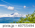 山 富士山 葉の写真 40755494