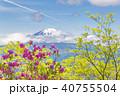 山 富士山 ツツジの写真 40755504