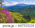 山 富士山 ツツジの写真 40755529