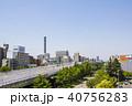 風景 都市風景 若宮大通の写真 40756283