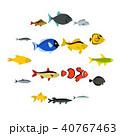 魚 アイコン ベクトルのイラスト 40767463