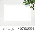 壁 白壁 葉のイラスト 40768554