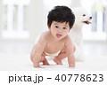 ハイハイする赤ちゃん 40778623
