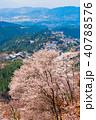 桜 風景 花の写真 40788576