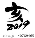 筆文字 2019 亥のイラスト 40789465