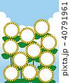 夏 ひまわり フレームのイラスト 40791961