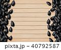 種子 ひまわり 向日葵のイラスト 40792587
