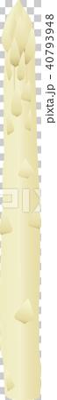 ホワイトアスパラガス 40793948