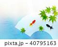 金魚 扇子 もみじのイラスト 40795163