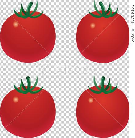 ミニトマト 40799161