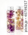 ハーバリウム 植物標本 花の写真 40799257