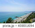 桂浜 晴れ 海の写真 40801694