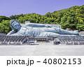 福岡県篠栗町の南蔵院 世界最大の釈迦涅槃像 40802153