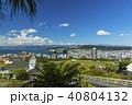 ニュージーランド ウェリントン ケーブルカー ケルバーン展望台からの風景 40804132