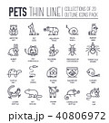 Animal flat thin line illustration icons set. 40806972