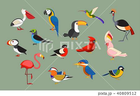 Popular Birds Icon Set 40809512