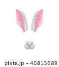 うさぎ ウサギ 兎のイラスト 40813689