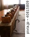 かぼちゃ カボチャ 南瓜の写真 40815809