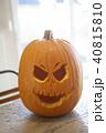かぼちゃ カボチャ 南瓜の写真 40815810