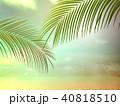 背景-南国-海-空 40818510