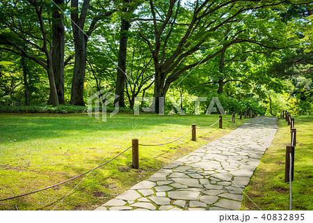 公園の木々と散歩道 40832895
