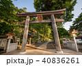 新緑の高麗神社 鳥居 埼玉県日高市 40836261