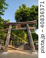 新緑の高麗神社 鳥居 埼玉県日高市 40836371