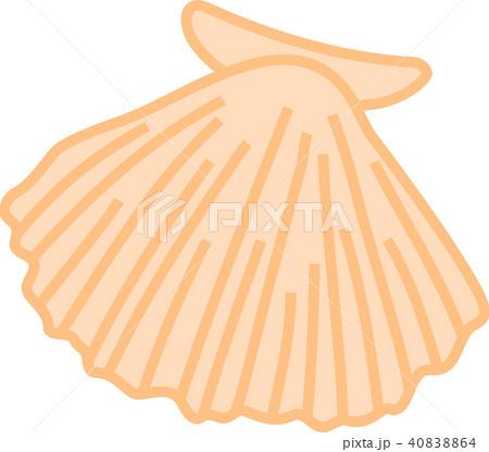 ほたて貝 イラスト のイラスト素材 40838864 Pixta