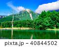 夏の上高地、焼岳と大正池に立ち枯れの木 40844502