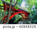 等々力渓谷 橋 ゴルフ橋の写真 40848326