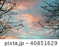 Dramatic sky at sunset in the woods 40851629
