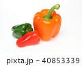 パプリカ ピーマン 野菜の写真 40853339