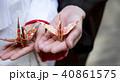 和装結婚式 祝い鶴 40861575