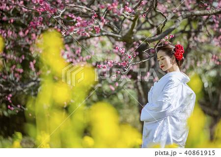 和装結婚式 花嫁 40861915
