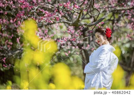和装結婚式 花嫁 40862042