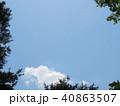 新緑 空 風景 背景  40863507