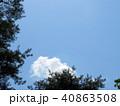 新緑 空 風景 背景  40863508