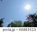 新緑 空 風景 背景  40863523