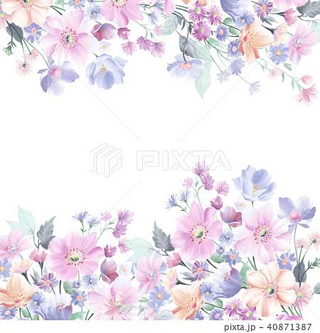 花 フラワー お花 40871387