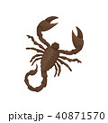 Detailed flat vector icon of Egyptian scorpion. Creature with eight legs, pair of claws and narrow 40871570