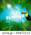 夏 ベクター 休暇のイラスト 40872213