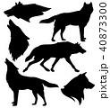 オオカミ 人影 影のイラスト 40873300
