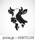 ウシ 牛 頭のイラスト 40875138