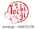 栃木 筆文字 いちご 水彩画 40875176