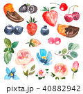 フラワー 花 ベリーのイラスト 40882942