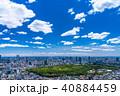 青空 初夏 東京都の写真 40884459
