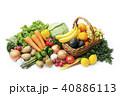 野菜と果物の集合 40886113